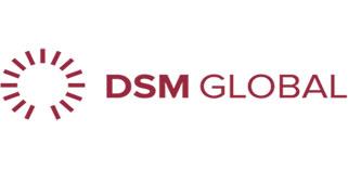 DSM Global Company Pvt Ltd